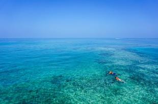 snorkeling-1209517